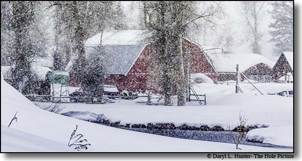Red Barn, snowstorm, Jackson Hole, Print for sale