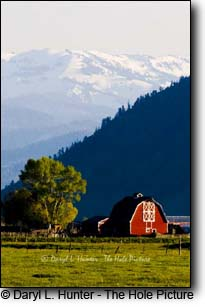 Red barn, ranch, Jackson Hole, Wyoming