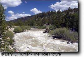 Gros Ventre Whitewater