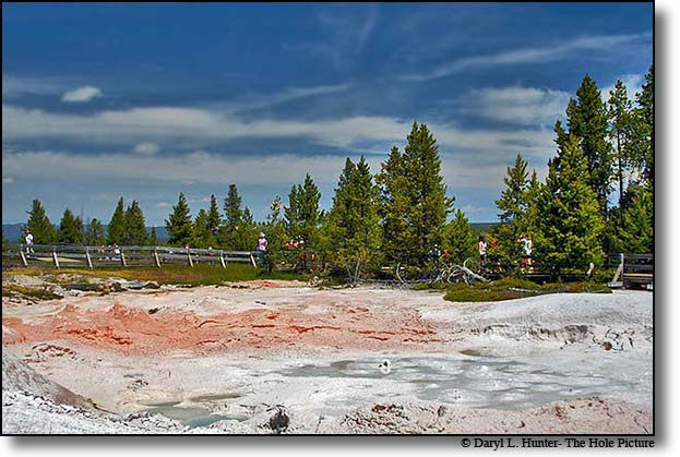 Fountain Paint Pot, Lower Geyser Basin, Yellowstone National Park