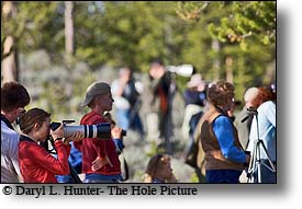 Yellowstone Photographers