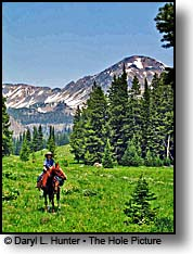 horseback rider Gros Ventre Mountains