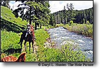 Bear Creek Trail Swan Valley ID fishing hiking riding ...