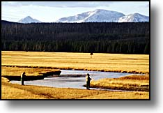 Gibbon Rivert fly-fishermen, yellowstone park