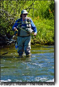 Madison River Fly-flyfishing