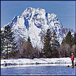 Fly-fisherman, Snake River, Mt. Moran