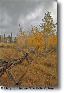 Buckrail fence, wind river mountains, pinedale wyoming
