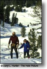 Cross Country Skier, towgottee Pass