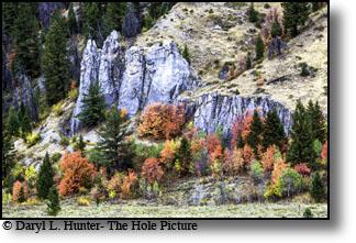 Star Valley Wyoming, Alpine, Thayne, Afton, Freedom