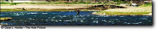 fly-fisherman the Salt River, Alpine Wyoming