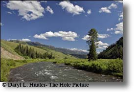Upper Greys River, Wyoming Range