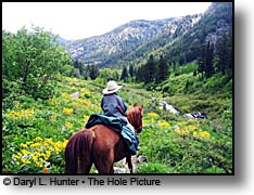 horseback rider Big Elk Creek Snake River Range Palisades Wilderness Study Area